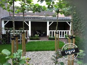 Veranda2---Tigro